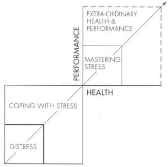 Relaxation Performance and Health Diagram